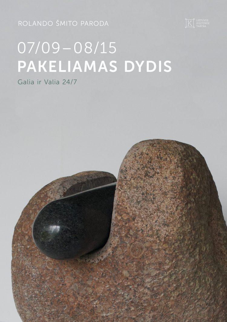 rs-2021-vilnensi-paroda_plakatas